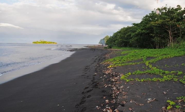 Venus Point Beach